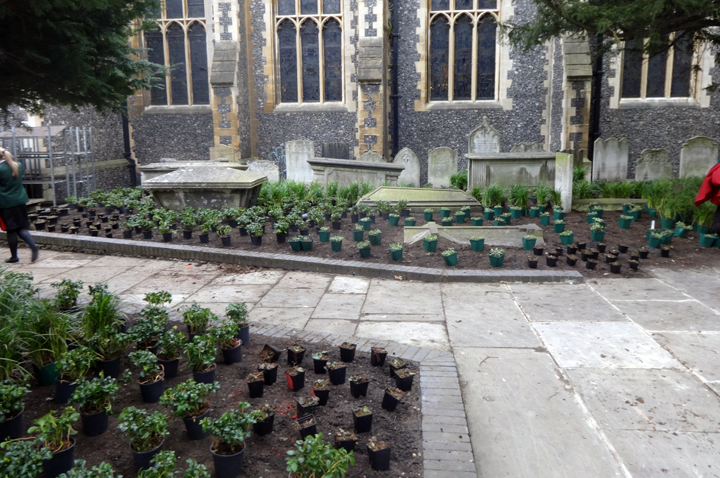 The completed renovation work at St Johns Memorial Gardens, Croydon
